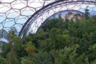 Inside the rainforest Biome at the Eden Project