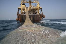 The Afrika Super Trawler